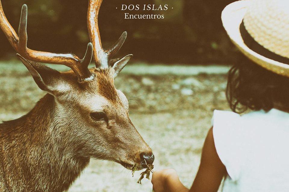 Dos Islas: pop y desamor para humanos sentimentales