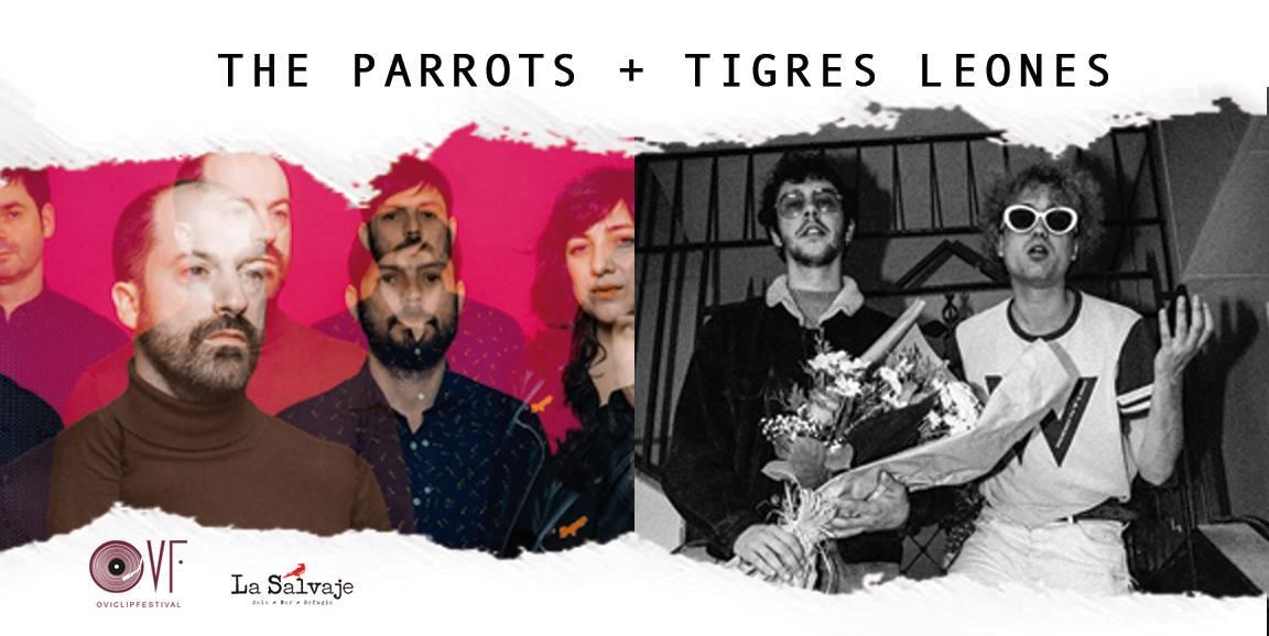 Tigres Leones + The Parrots