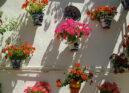 Andalucía 2.8, la playlist que estabas esperando